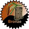 The Brdy Cacher - Bronze